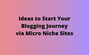 10+ Ideas to Start a Micro Niche Site in 2020